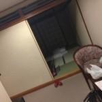 鬼怒川ロイヤルホテル(伊藤園グループ)の激安プランで泊まってみたよ!!バイキング朝食は美味しかった!?悪い評判があるけど、どう!?【レポート記事】