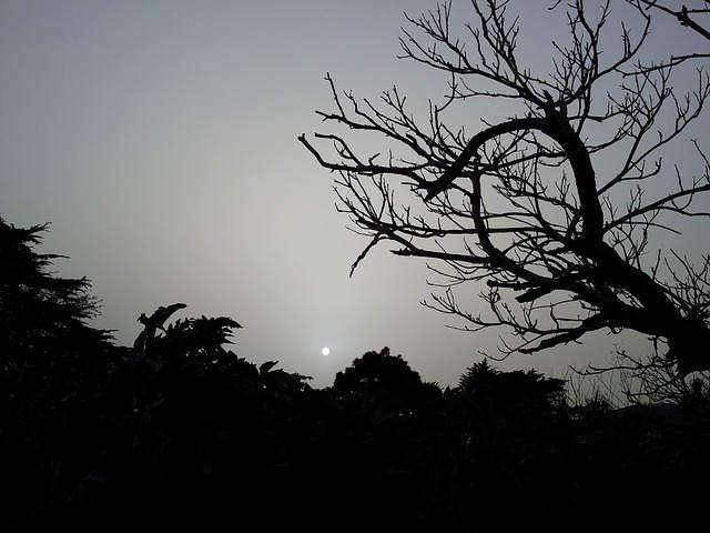 darkness-605975_640