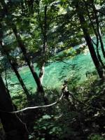 竜ヶ窪の池に行って来たよ!絶対に濁らない名水がヤバかった件